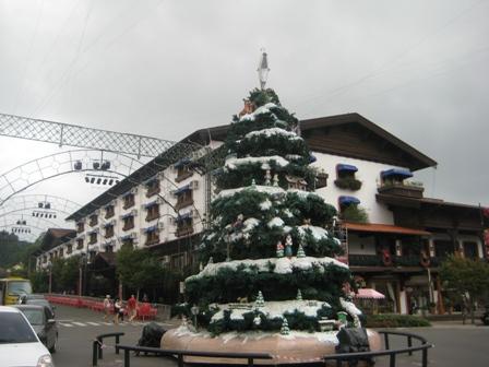Gramado Avenida das Hortênsias