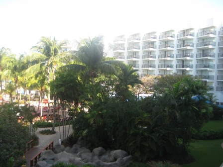 Aruba Hotel Marriott palm beach