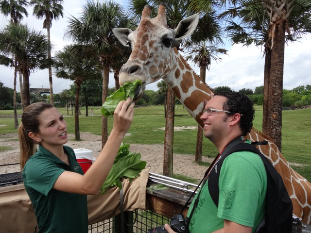 Busch Gardens Safari