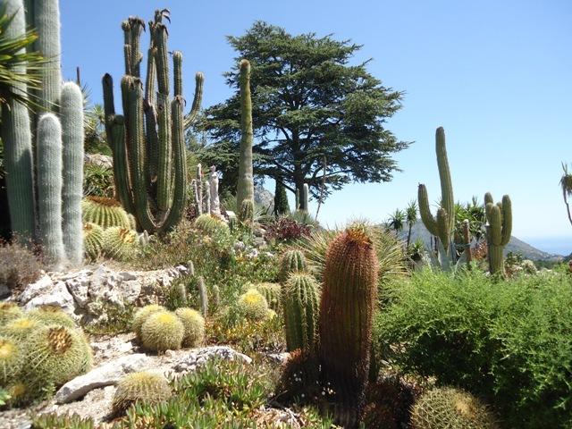 Eze - Exotic Garden 1