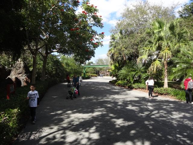 Miami Zoo 3