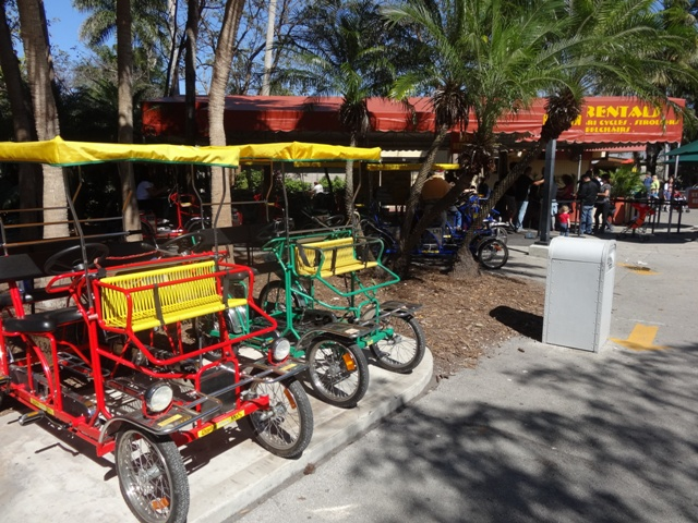Miami Zoo - Safari Cycle