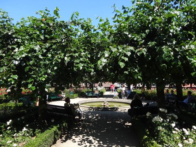 Bamberg - Rosengarten