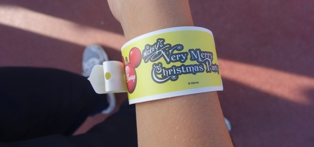 Mickeys_Very_Merry_Christmas_Party_2